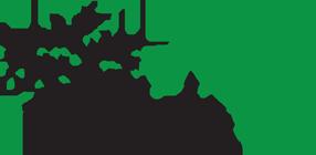 Nordic4 Logo